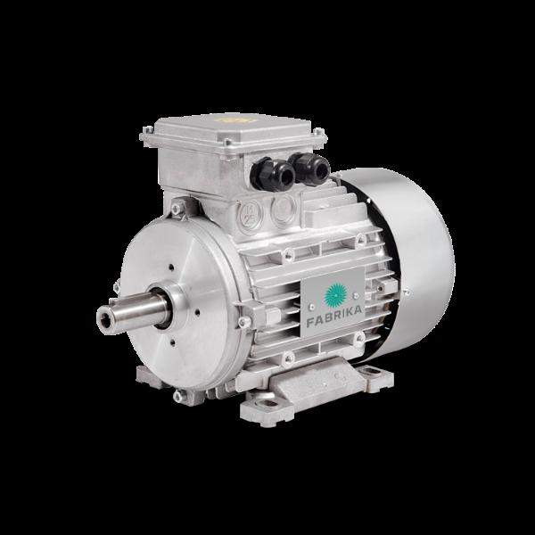 ATEX-motor fra Fabrika